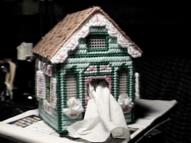 Forest Cottage Tissue Box Cover