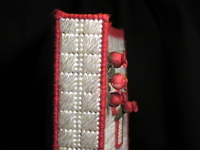 Bible Cover Spine