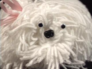 Shaggy Dog face